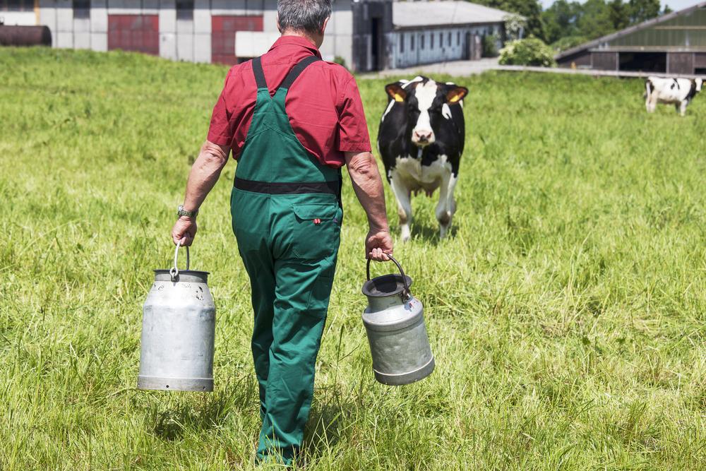 Rural aging | Grantmakers in Aging